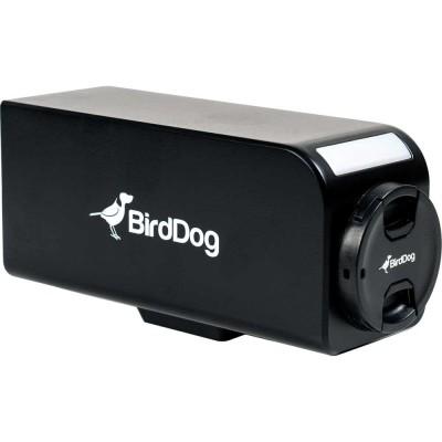 BirdDog PF120 Cámara Box NDI Full-HD Zoom 20x